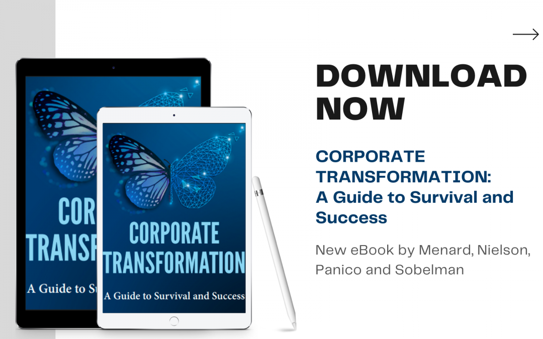Corporate Transformation: A Guide to Survival and Success